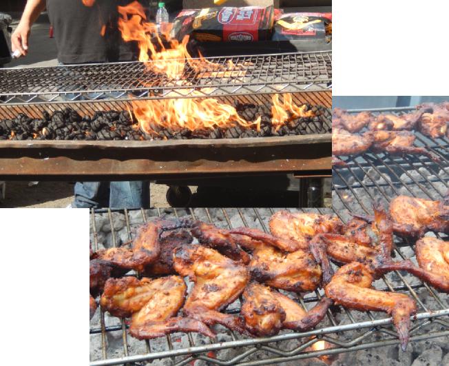 ToTS-grill